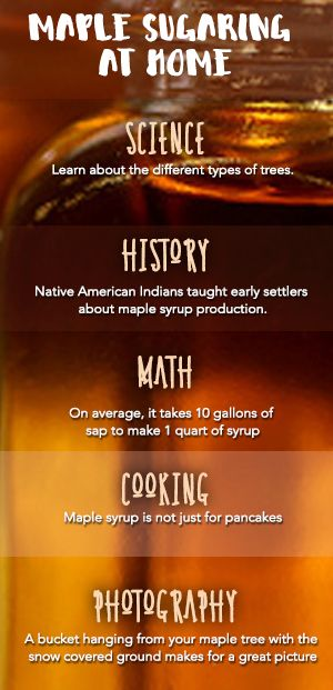 Maple Sugaring at Home is Educational - Maple sugaring (making maple syrup) at home offers many learning opportunities.  Here are my favorite...