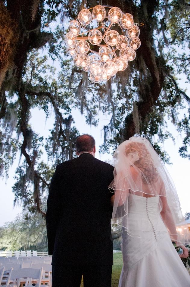 awesome dyi chandelier  www.lh-photo.com