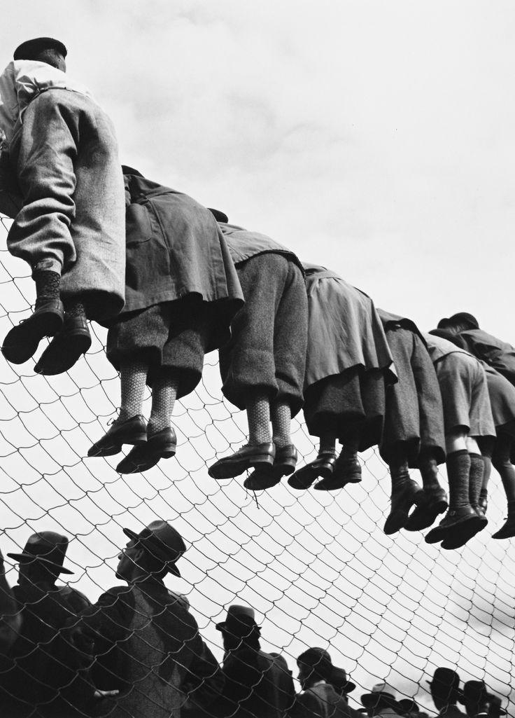 Bei den Hunderennen, 1934 – Fotografiert von Emil Heilborn