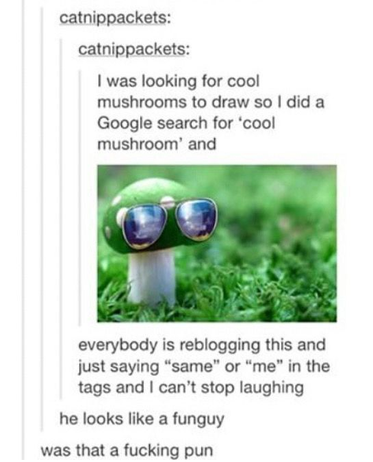 i really love existence sometimes look at this itty bitty mushroom look how fucking cool it is look at it's tiny glasses like yes this is some Quality Content™