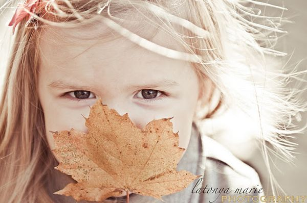 Herfst project - Get the Most Out of the Season With Your Fall Photo Checklist - Digital Photography & Creative Lifestyle