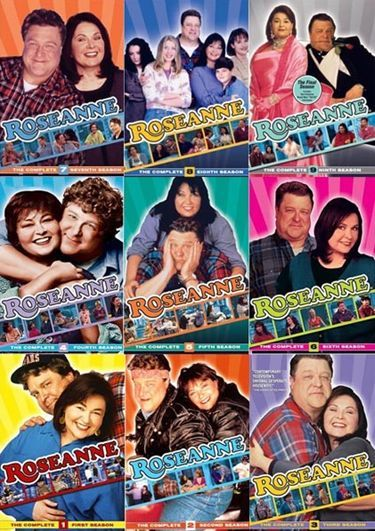 Roseanne TV Show | Roseanne | Séries e Desenhos | TV Sinopse
