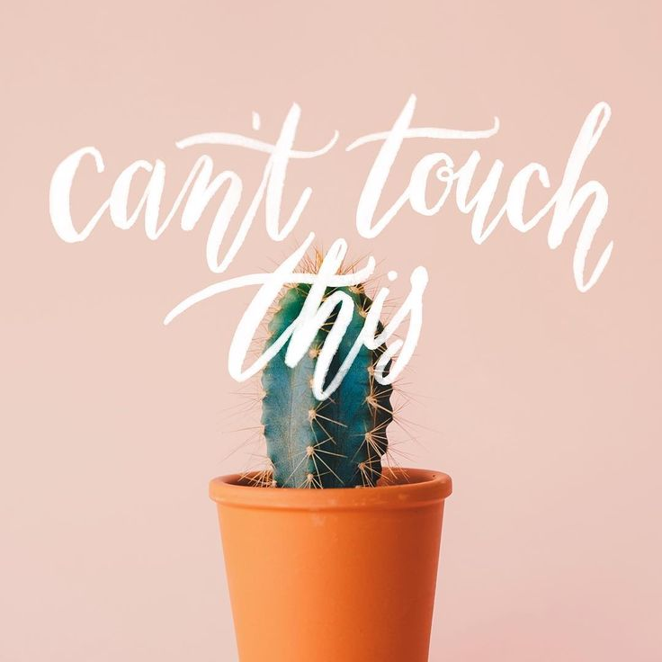 Can't touch this... Having too much fun playing around with brush lettering 😂 #pacecreative #brushlettering #lettering