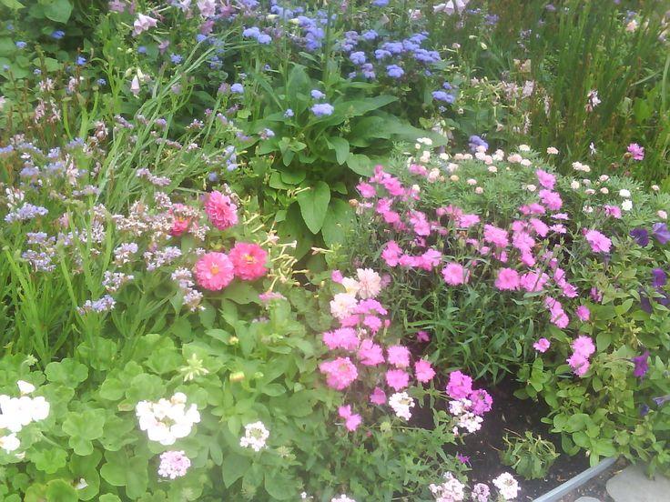 engelsk trädgård inspiration - Google Search