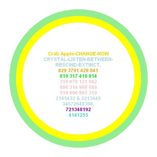 Skin Health and Anti Wrinkle Energy Circle