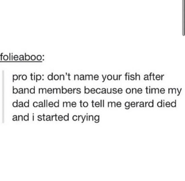 gerard the fish