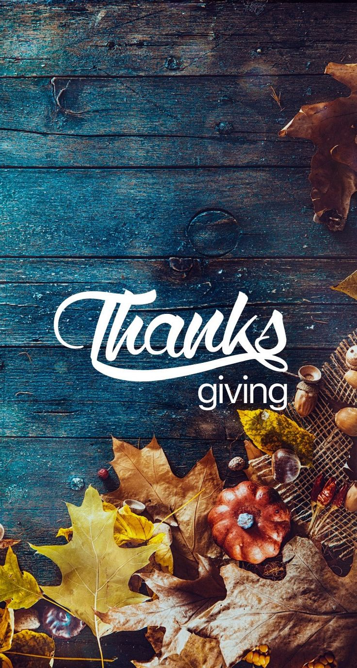 Thanksgiving wallpaper #thanksgiving #iphone #wallpaper #phone #phonewallpaper iPhone X Wallpaper 291185932155727215 5