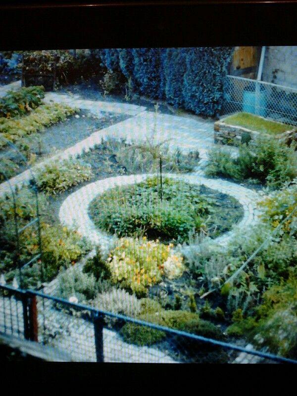 Dia van de kruidentuin in het aller eerst begin.  De buxus haag zijn hier nog maar stekken. De tuin is in Mei 1990 aangelegd.