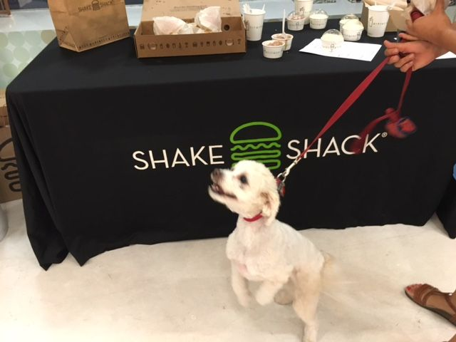 SoCal's full-service pet store, Healthy Spot, partnered for the first time with Los Angeles' Shake Shack.