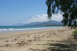 Beach near Port Douglas on the way to Cape Tribulation