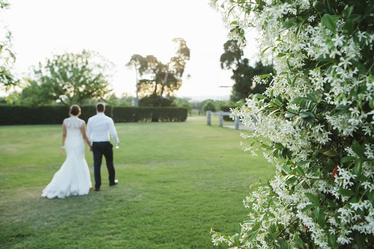Bride and groom walking into the sunset, star jasmine in the foreground. Photo: Samantha Macabulos. Venue: Sydney Polo Club