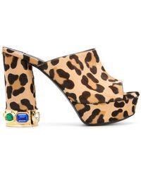 Casadei | Leopard Print Platform Mules | Lyst