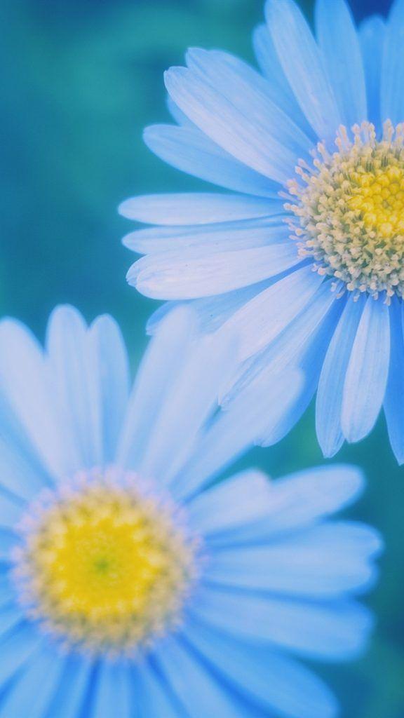 25 Blue IPhone Backgrounds Blue Backgrounds Pinterest Nature
