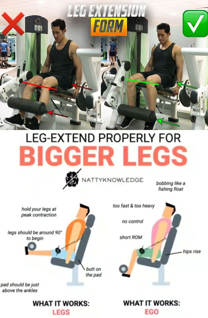 How To Leg Extension With Images Gym Workout For Beginners