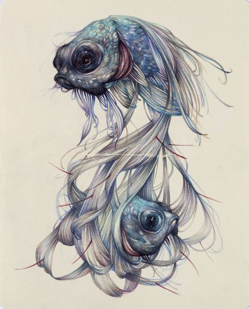"""The Hairy Fish""2012, colored pencils and ink on moleskine paper, cm 26x21  Published 08 Nov 2012 (1 week ago)  Reblogged from martinekenblog  Posted by marcomazzoni  illustration drawing"