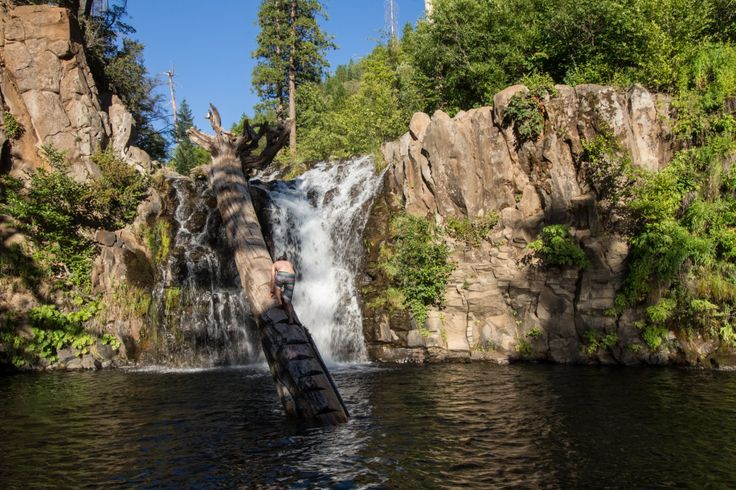 Climb the log to access jumping locations at Hatchet Falls.- 15 Incredible Swimming Holes in Northern California
