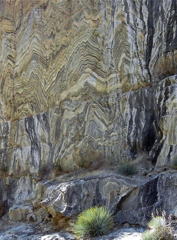 Amazing Geologist ⚒ Tightly folded gneiss, Kings Canyon National Park, Fresno County, California. Roadcut exposure along Kings Canyon Scenic Drive. Yucca plant at bottom-center of image is about 1 m (3 ft) in diameter |#Geology *Photo : © Michael Rymer visit : http://www.geologyin.com/