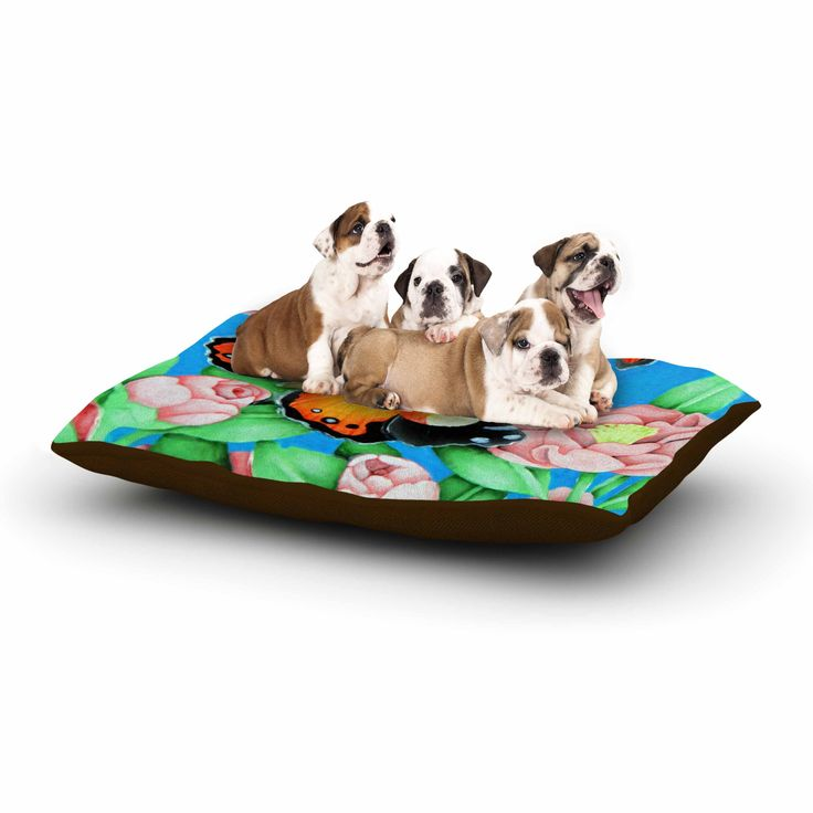 """Vinny Thompson """"Yellow Admiral"""" Multicolor Tropical Dog Bed"""