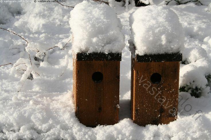 Kaksin kera hattujen - linnunpönttö talvi linnunpöntöt lumi kaksi pari valo itse tehty