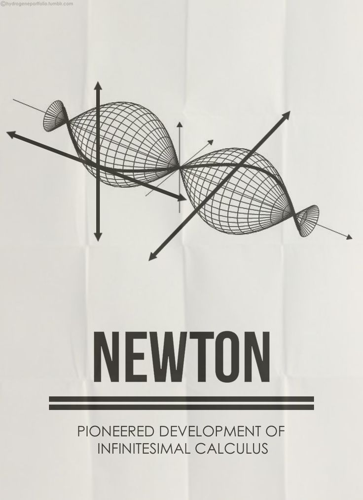 Minimal Posters -  Five Great Mathematicians And Their Contributions: Newton