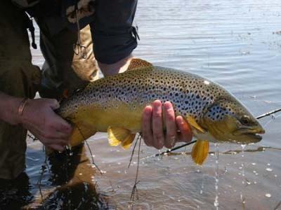 Rhodes Fly Fishing Adventures For Trout and Yellow fish....http://www.farawayvacationrentals.com/view-tour/Rhodes-Fly-Fishing-Adventures-for-trout-and-Yellow-fish/107