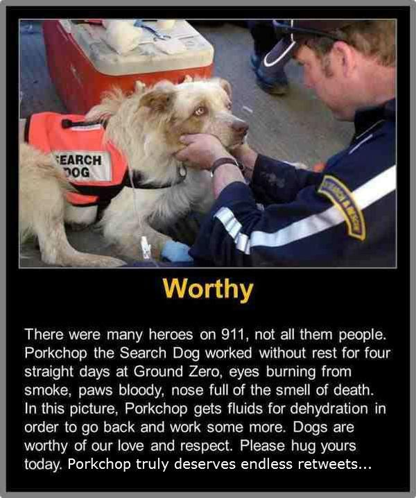 Not All of the Heroes of 9/11 Were Human