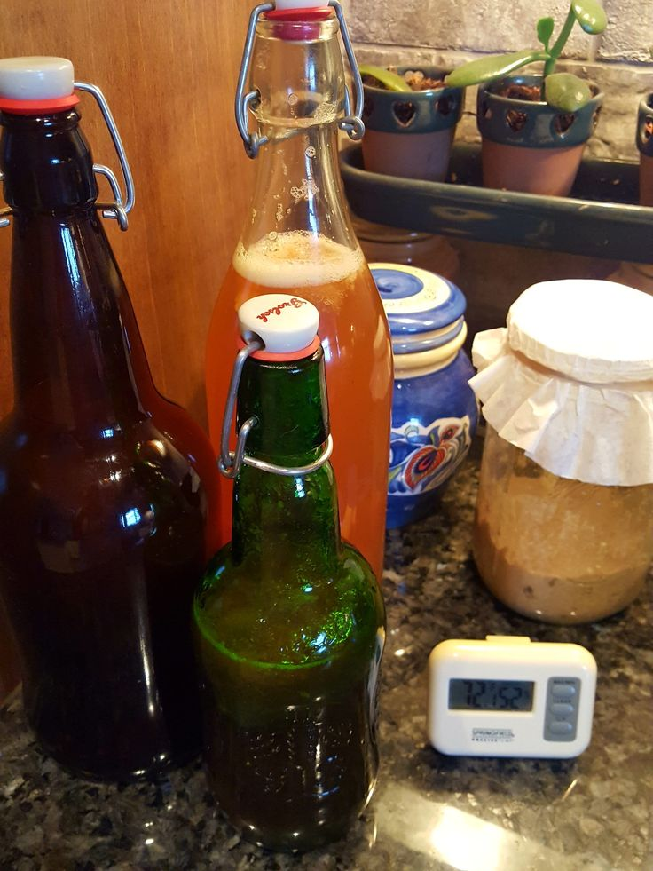 Apple ginger/strawberry ginger second ferments (kombucha) and a baby sourdough starter February 2018