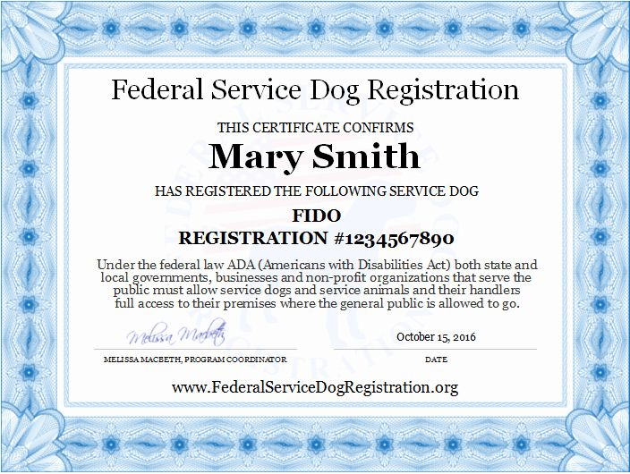 Pin By Matthew Houle On My Saves Service Dogs Service Dog Registration Certificate Templates Free