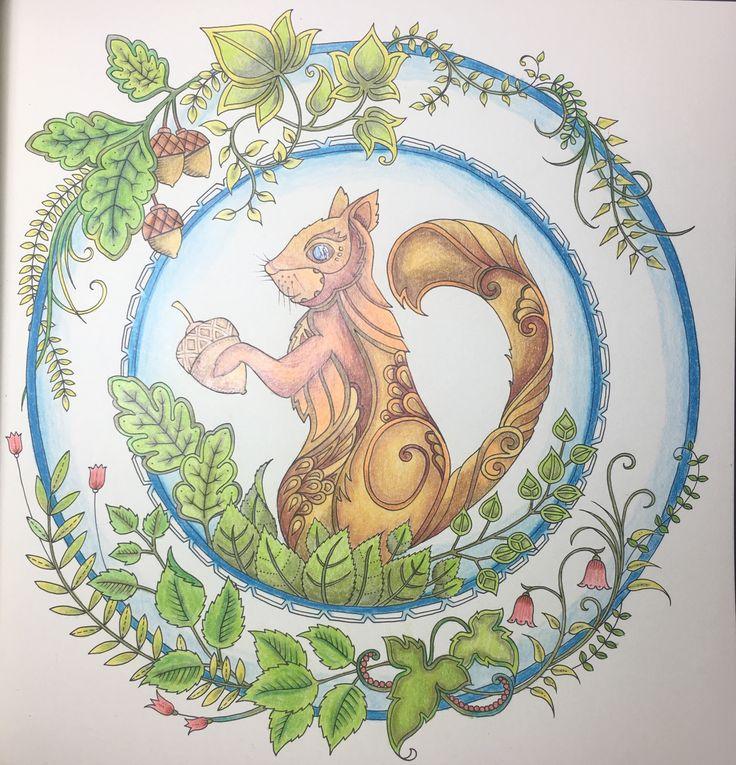 Coloringbook Coloringbooksforadults Colorear Secretgarden Addictedtocoloring Artecomoterapia Colorearparaadultos Mindfulnesscoloringbook