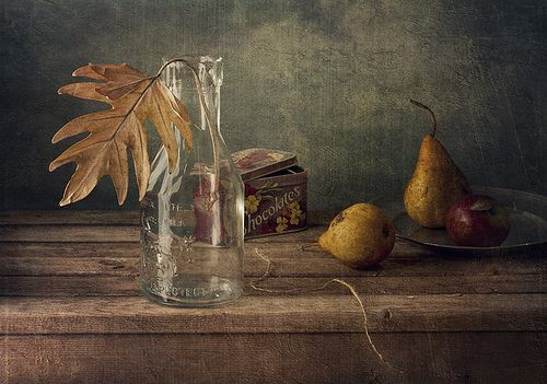 Fantastic still life photography by Anna Nemoy