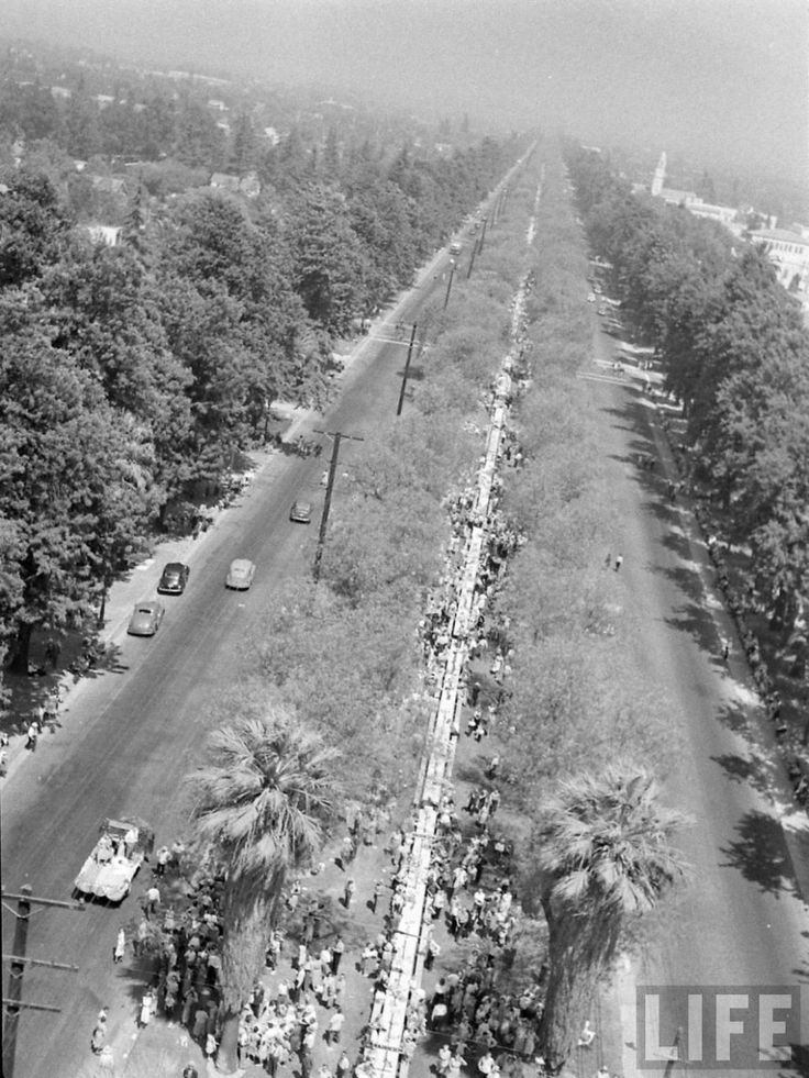 All State Picnic 1948 - Euclid Ave, Ontario, California