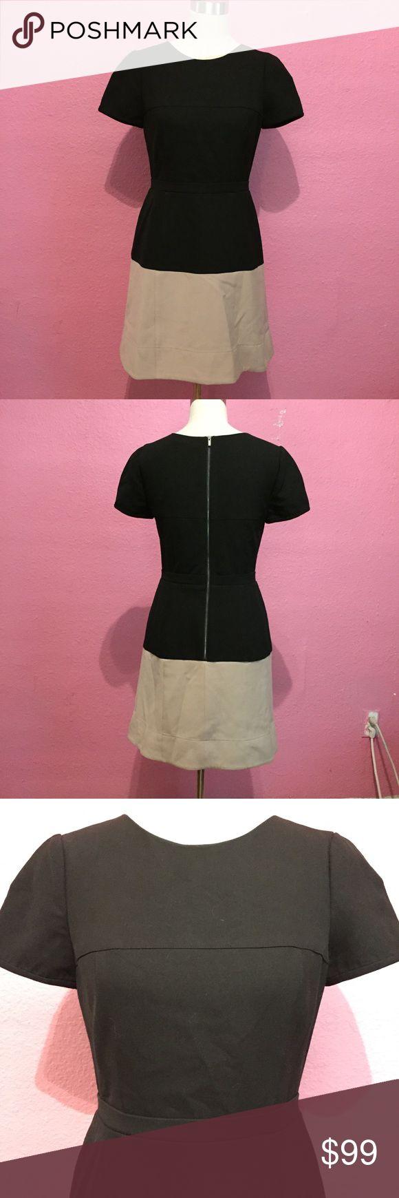 BCBGMaxazria dress color block career dress BCBGMaxazria dress color block career dress BCBGMaxAzria Dresses