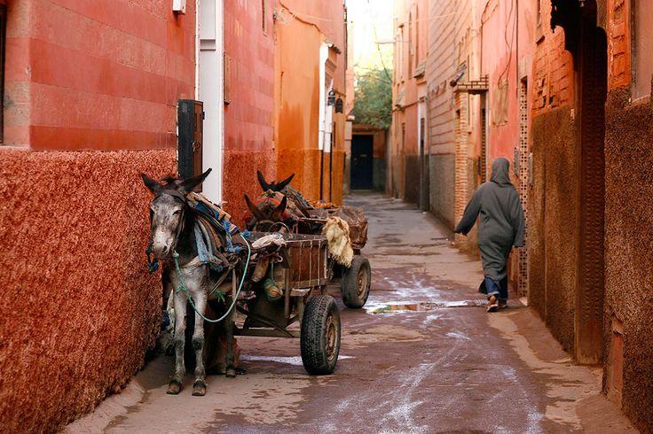 Медина Марракеша, Марракеш, Марокко, Африка