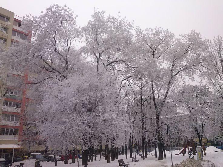 Month:January 2014 Location: Mihai Bravu,Bucharest Author:Langhe Emil