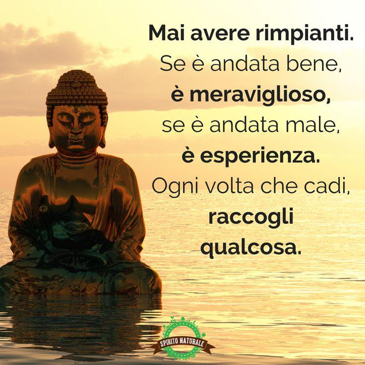 #aforismi #frasi #citazioni #spiritonaturale