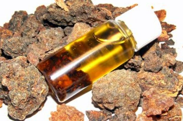 oleo-essencial-de-mirra-arabica-commiphora-mukul