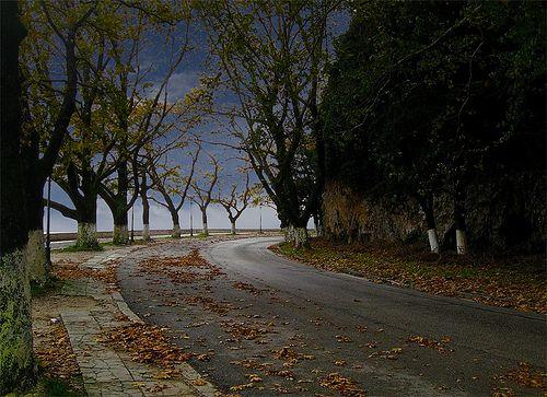 Ioannina - Autumn Leaves Ioannina Greece, next to the lake