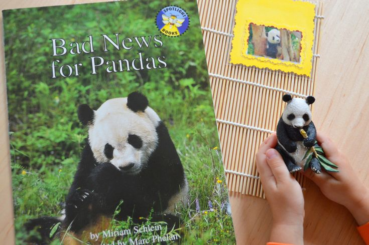 Bad News for Panda, book, Montessori From The Heart, China Continent Box, Montessori Cultural & Science, Montessori, Geography, Chinese New Year, Lunar New Year, Montessori Continent box, continent box, China study, China unit study, The Great Wall, Jade, Chinese celebration, Chinese dragon, Panda, homeschool