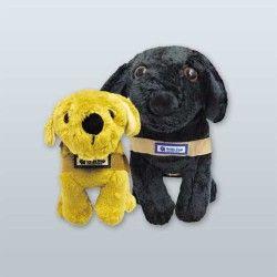 Harness Puppy