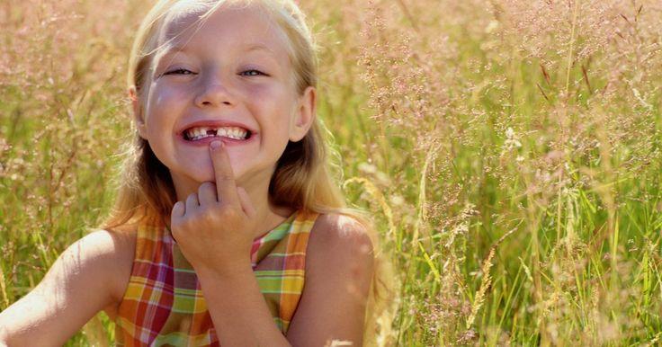 Os quatro tipos de dentes humanos. Um dente nada mais é do que uma estrutura dura, saliente e esbranquiçada composta por três elementos: polpa, dentina e esmalte. Nossa primeira dentição apresenta 20 dentes de leite, que mais tarde serão substituídos por outros 32 permanentes. Como a função principal é a mastigação, eles são agrupados em quatro grupos distintos e cada um tem sua ...