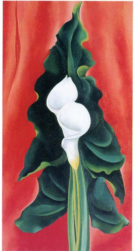 Georgia O'Keeffe, Calla Lillies on Red, 1928, Oil on canvas, 32 1/8 x 17 1/8 inches, Gift of Anne Windfohr Marion, ©Georgia O'Keeffe Museum