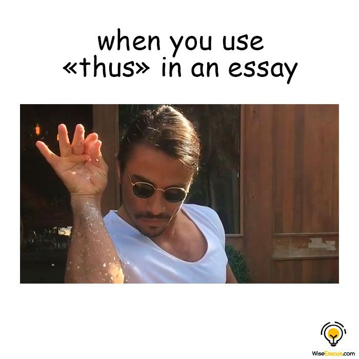 Feel Very Clever Student Memes Essay Writer Essay Writing