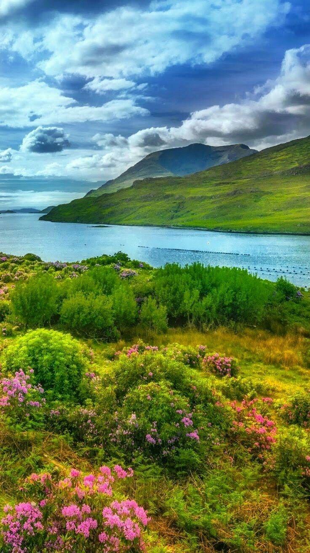 Pin By Natural Approach On Melihat Menikmati Beragam Pemandangan Landscape Dari Penjuru Dunia Beautiful Nature Nature Photography Nature Pictures