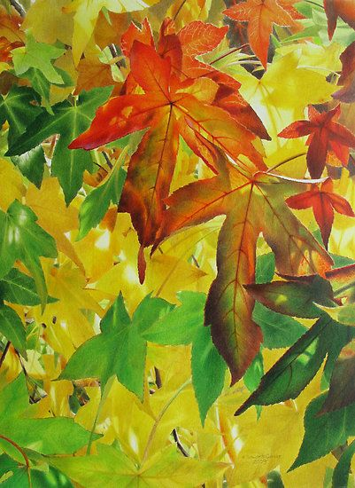 Autumn Light and Colour by Heidi Schwandt Garner. beautiful colour and shining light.