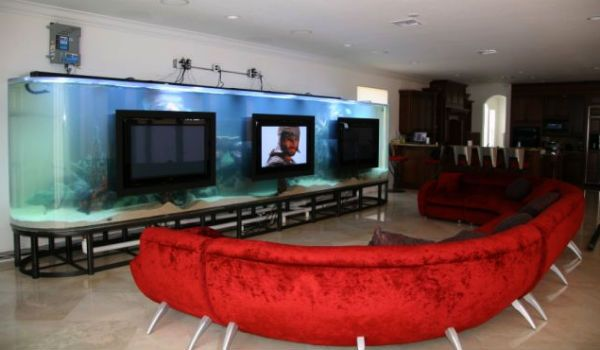 Celebrities With Amazing Fish Tanks
