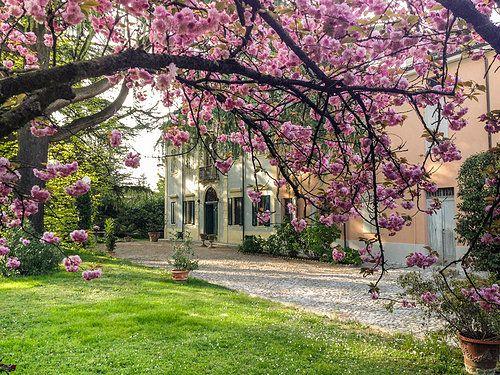Corte Finzi, Parma