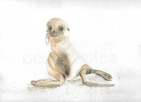 Baby Seal Watercolor DIGITAL Painting  Nautical Wall Art