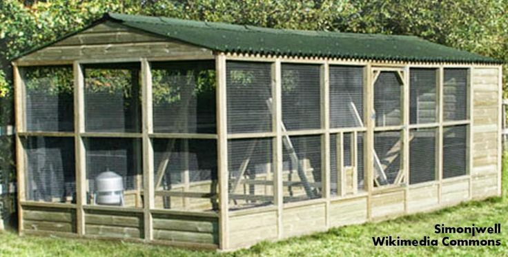 cheap and easy chicken coops | Large chicken coop with run