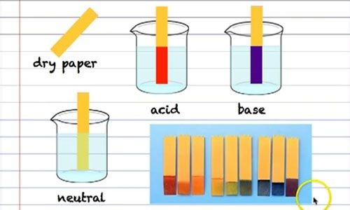 acids bases and salts research paper 2015-8-10 acids , bases and salts  bases and acids are typically found in aqueous solution  paper paper solution solution.