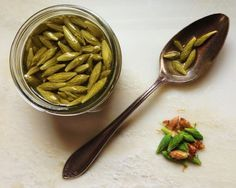 "Spruce Tip Pickles capers:::2 c fresh, young spruce tips, papery husk removed 1 c water 1/2 c acv 2 tsp salt Method  Clean the spruce tips of their papery husk and give them a rinse if they are dirty. Pack your 1/2 pint jars with spruce tips, 1/2 inch of headspace. Heat the water, vinegar, and salt in until dissolved and clear Fill jars 1/2"" headspace.  Waterbath 10 min.  pickle 3 months before using."